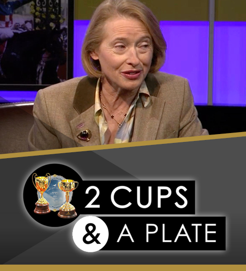 2 cups & a plate